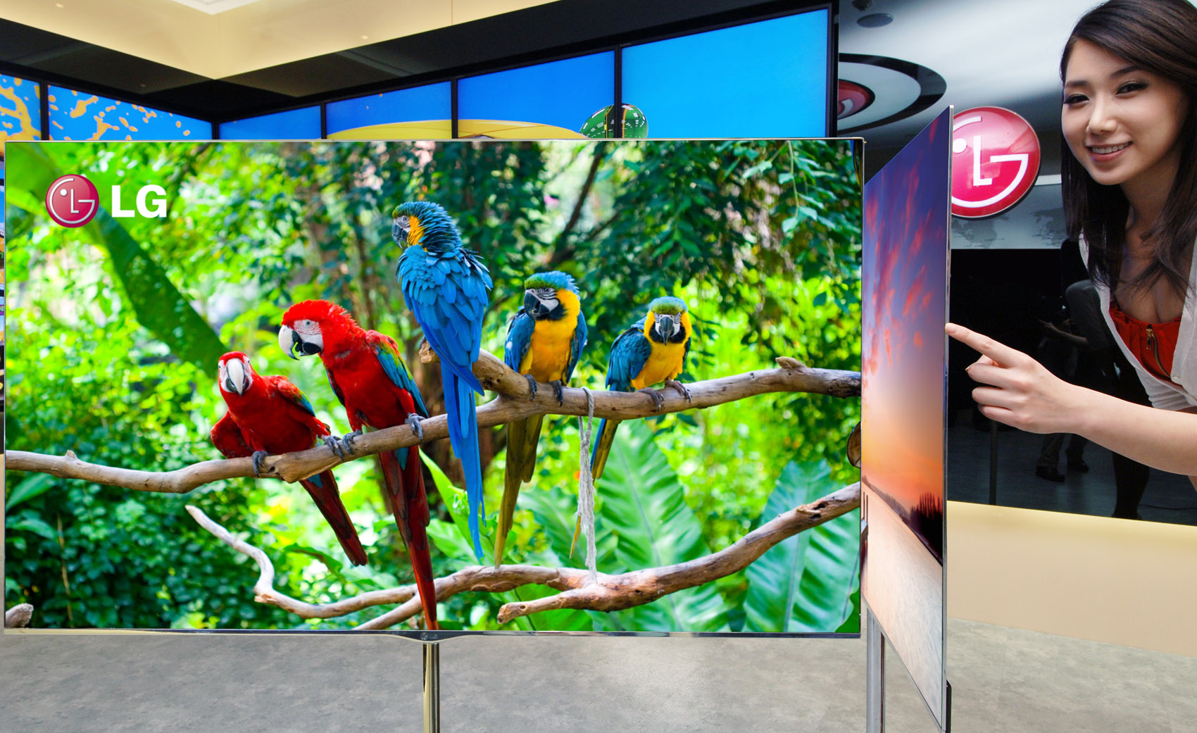 LG 55 Inch OLED TV_01