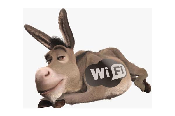 wifi szamar