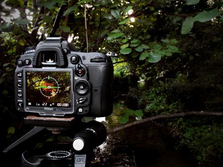 Nikon-D7000-in-the-wild