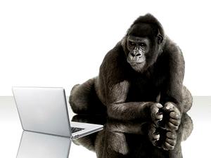 corning_gorilla_1