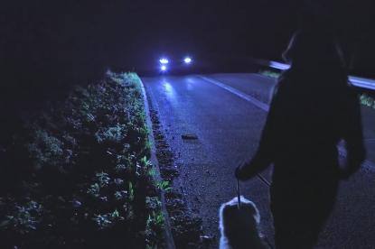Hőérzékelő kamerákkal tenné biztonságosabbá az éjszakai vezetést a Ford