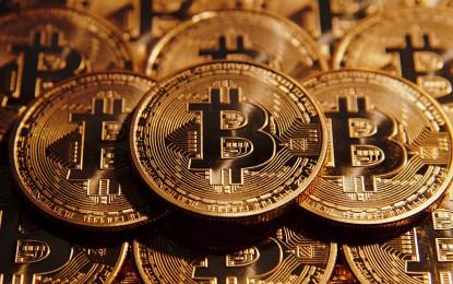 Kamu volt a Bitcoin-alapító története