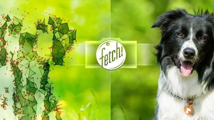 fetchmicrosoft