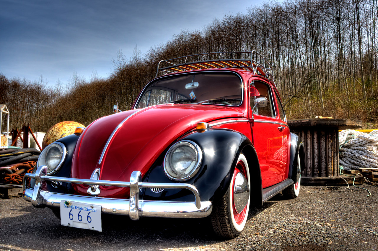 volkswagen_bug_2_by_vidiphoto