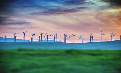 Distant View Of Wind Turbines On Farm At Sunset