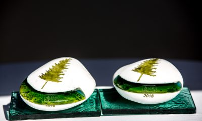 gran-prize_dijatado_2018_kep_dijak