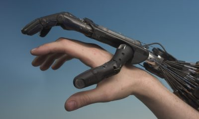 human-and-robot-hand-togethercrw_9331-1