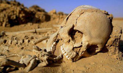 gobero-skull-sahara-desert-archeology-2016-1
