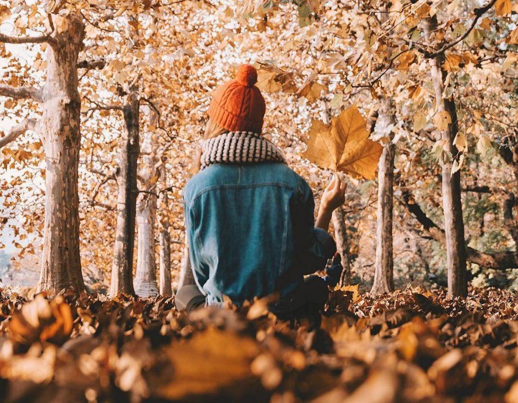 travel-asia-autumn-fall-foliage-hero
