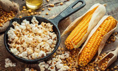 corn_popcorn_yellow_hulles_hybrid