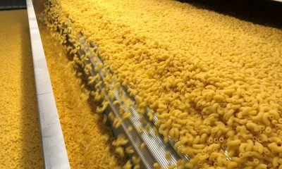 gyermelyi_pasta_manufacturer_production