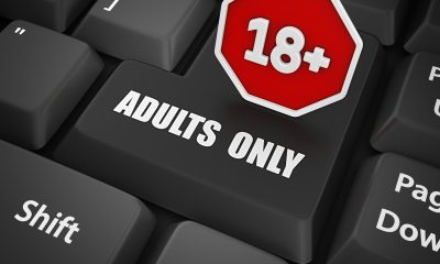 adults only enter key and 18+ stop sign.3d render.