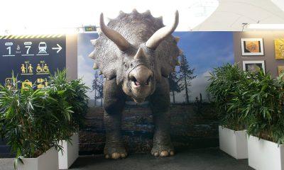 3d-dinoszaurusz