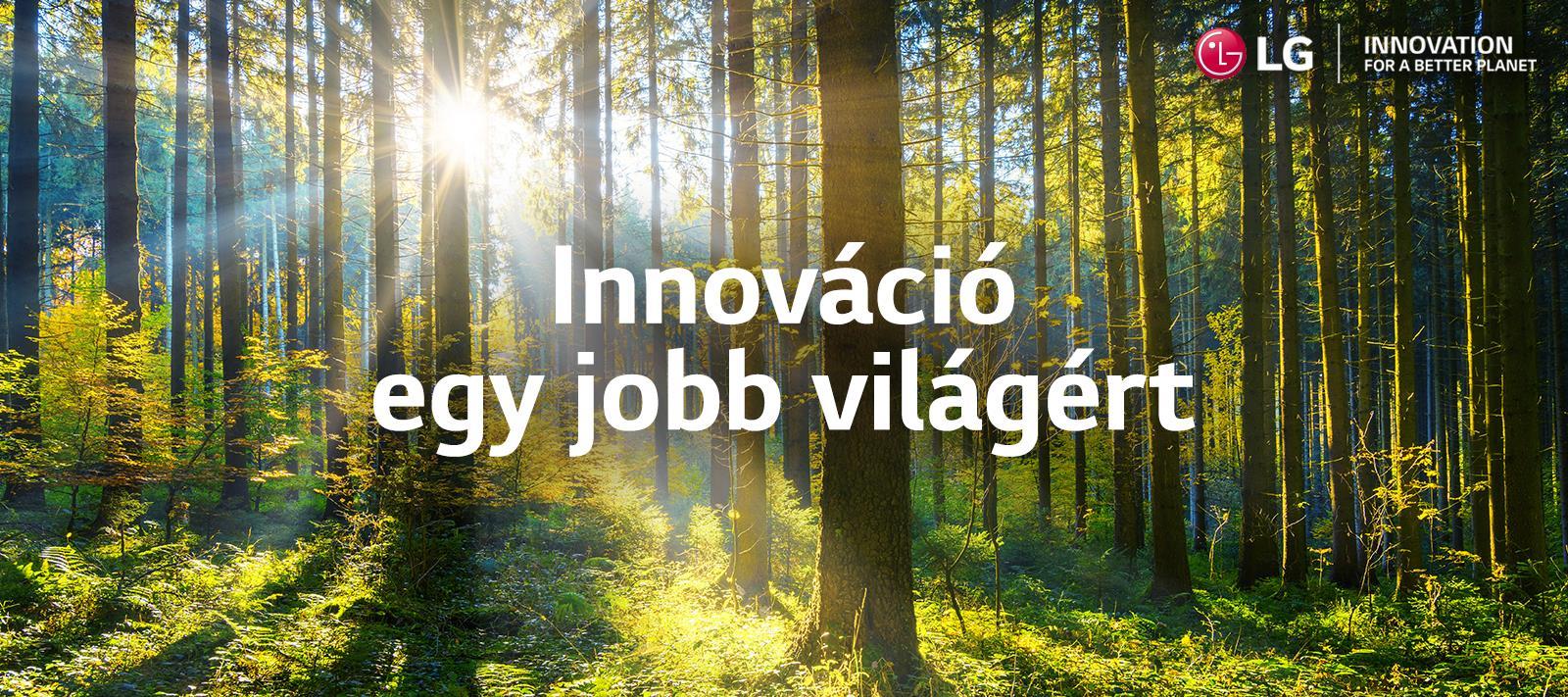 lg_sustainability