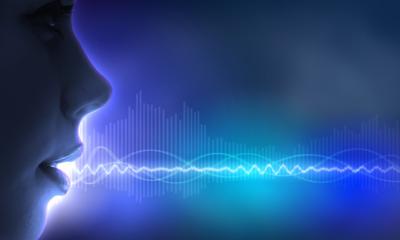 vocalis